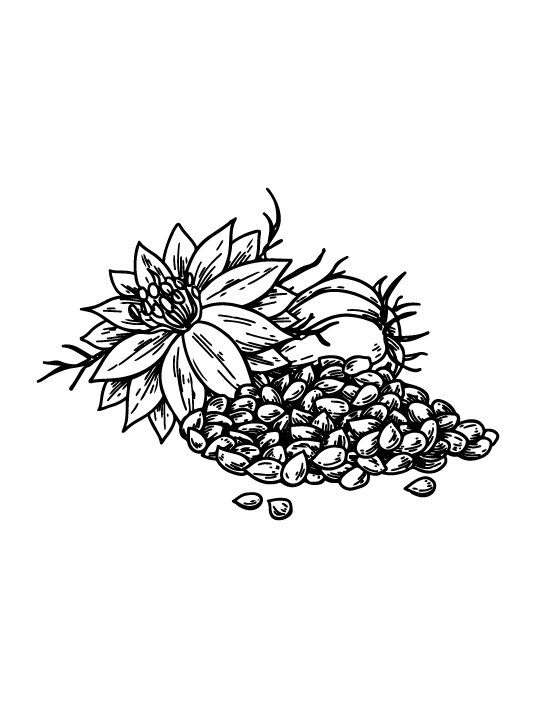 Nigella Sativa Paste